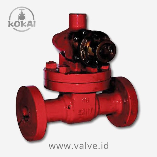 Cast Steel Parallel Slide Blowdown Valve